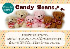 【キャンディビーンズ】『CandyBeans』クマ入荷