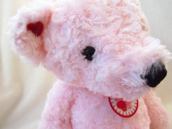 幸せを呼ぶクマさんPK(M)アップ