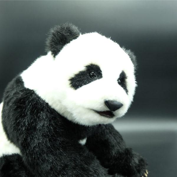【三木恵】パンダ1