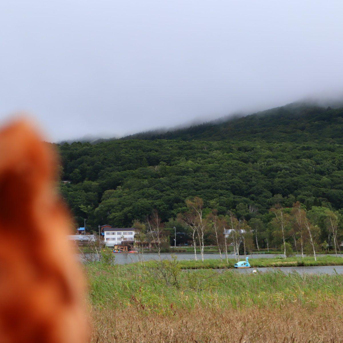 白樺湖と白鳥ボート(水色)②