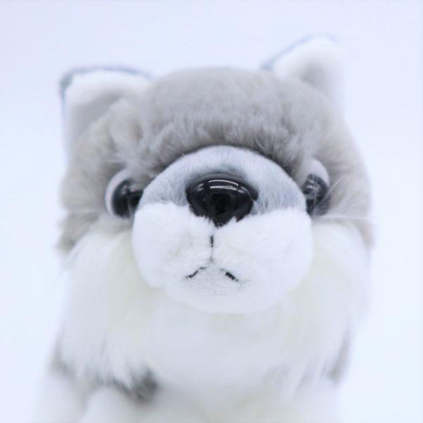 Step Snow(S)オオカミ(まえUP)