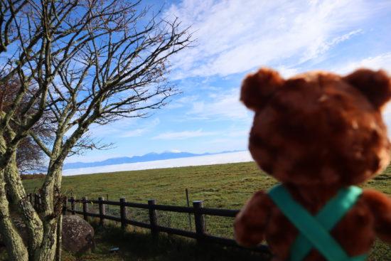 牧場の柵から雲海を眺めるグッティー