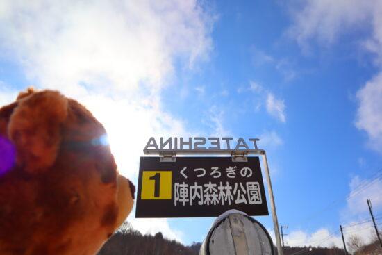 陣内森林公園